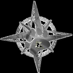 Master_Ranger insignia - silver_edited.p
