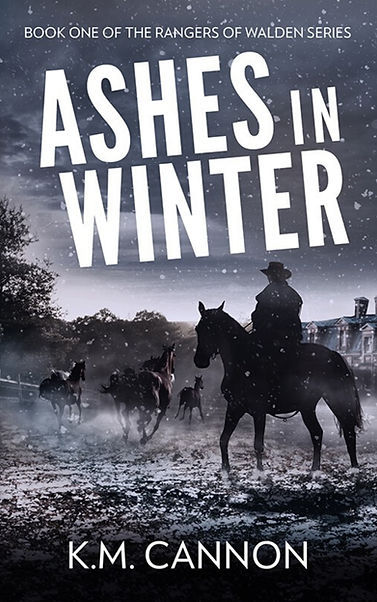 Ashes in Winter - EBook Tease.jpg
