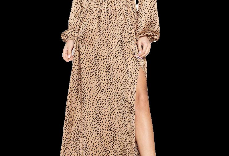 Leopard Surplice Maxi Dress