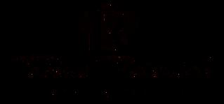 Logo-schwarz-frei2_edited.png