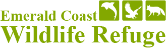 Emerald Coast Wildlife Refuge Groundbreaking