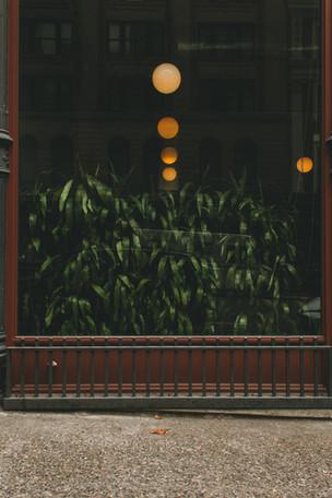 Green Window Seattle May 2019-5.jpg