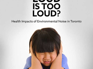 How Loud is too Loud?