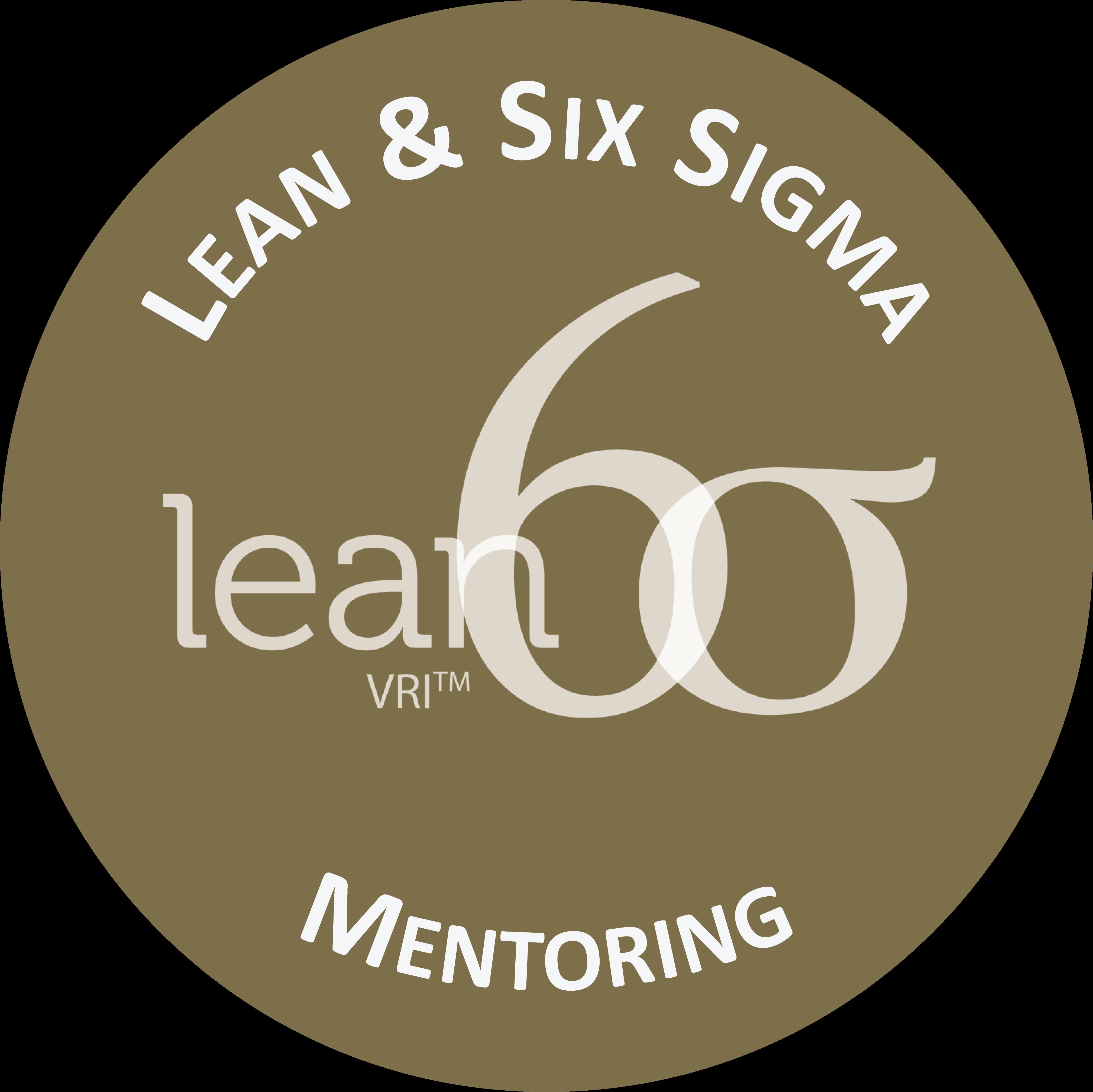 Lean & Six Sigma Mentoring