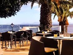 Lanzarote Palms