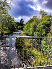 Stream Bridge