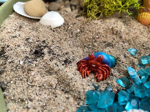Hebert the hermit crab