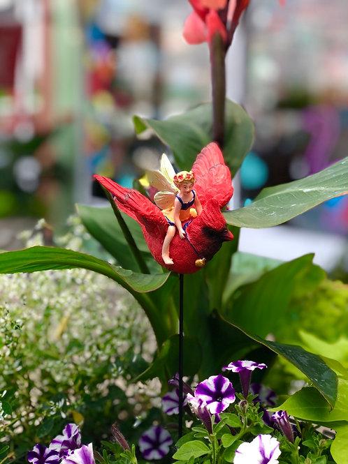 Cardinal garden pick