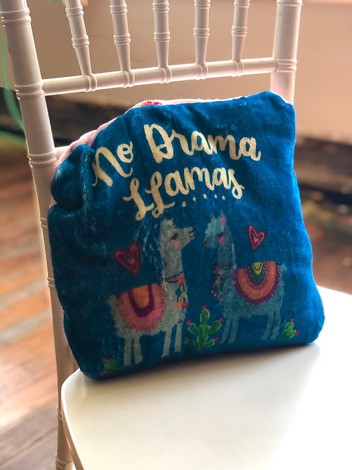 2-in-1 blanket and pillow