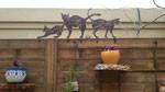 חתולים מברזל