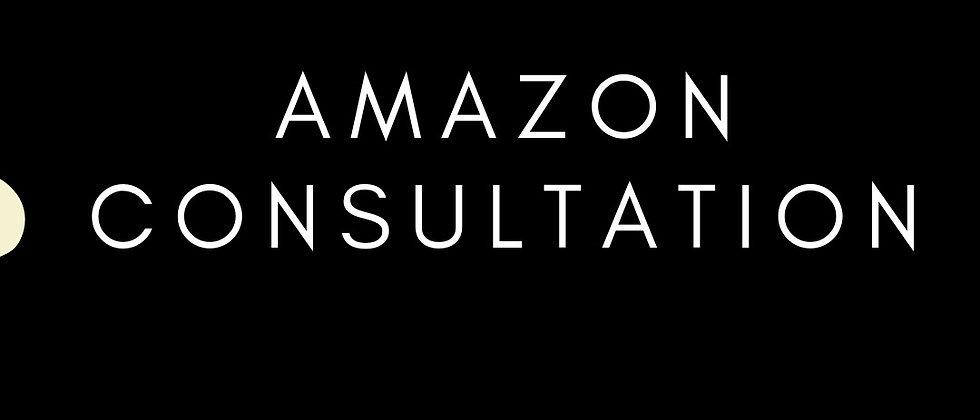 Amazon Consultation