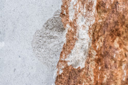 Marmo di Aurisina
