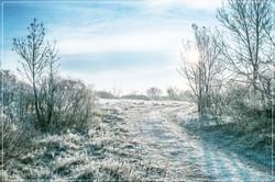 Inverno sul Carso