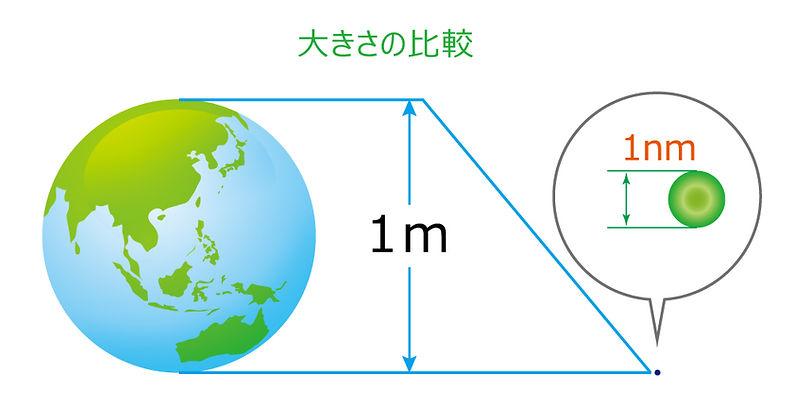 大きさの比較.jpg