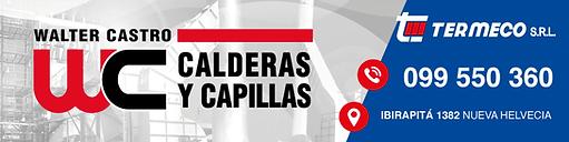 Logo Walter Castro 3.png
