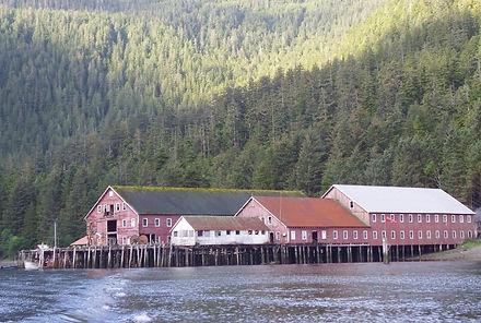 noyes island resort steamboat bay cannery