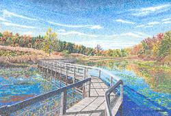 Wolf Creek Wetlands