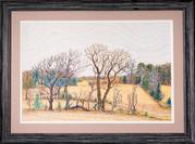 Tree Rows
