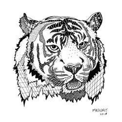 Zen Tiger