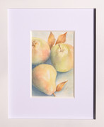 A Pair or Pears plus One