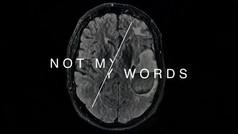 NOT MY WORDS