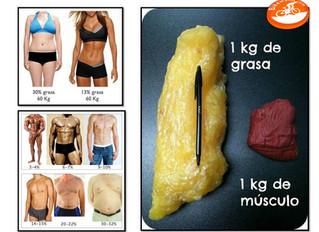 Diferencia entre perder peso y grasa.