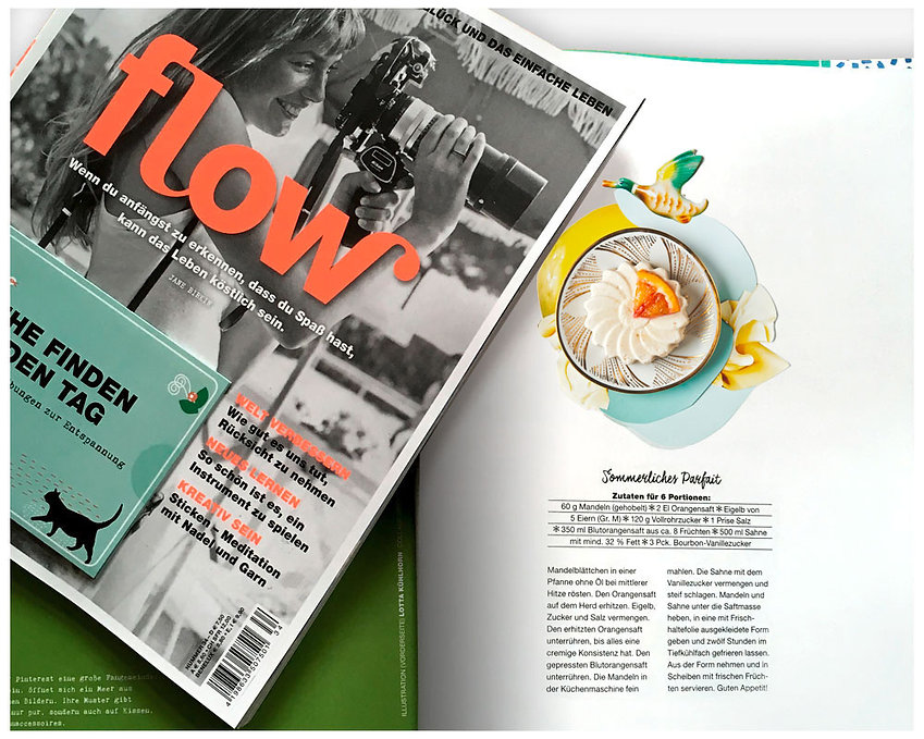 flow_mag_coll.jpg