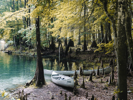 Lakes near Tallahassee: Outdoor Tallahassee Activities