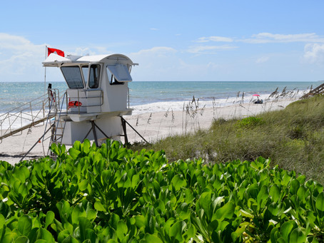 How to Spend a Christmas Holiday in Vero Beach