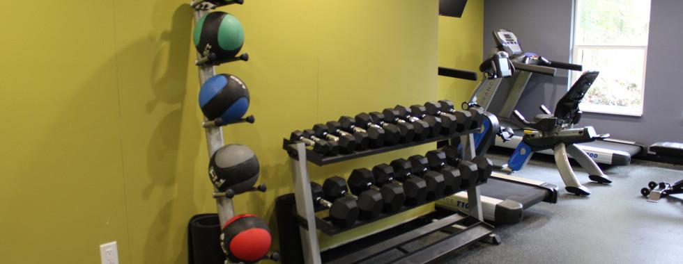 Gym - Med Balls _ Free Weights.JPG