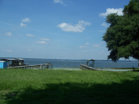 Outdoor Attractions in Ocala: Lake Weir