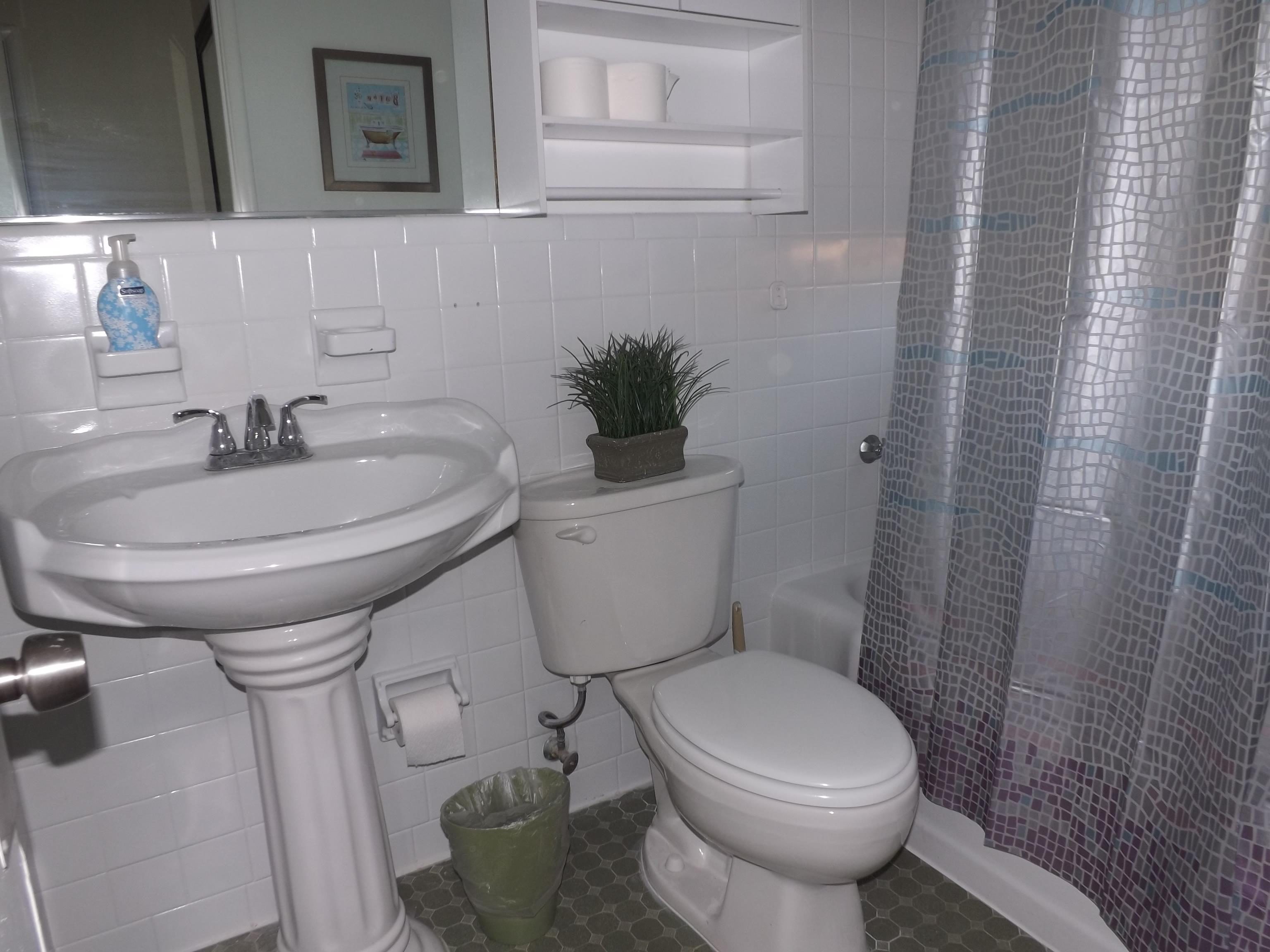 One-bedroom suite private bathroom