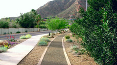 56th Street Paradise Valley