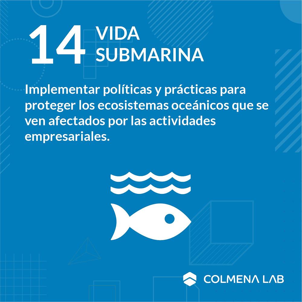 Objetivo de desarrollo sostenible 14 Vida Submarina