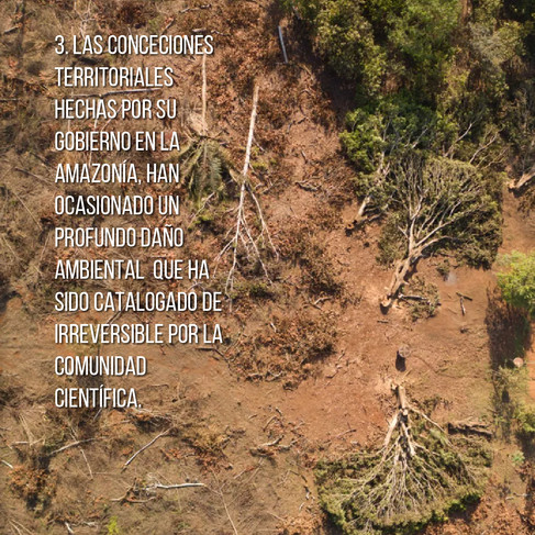 Arte para medios sociales sobre el caso de la deforestación en Brasil