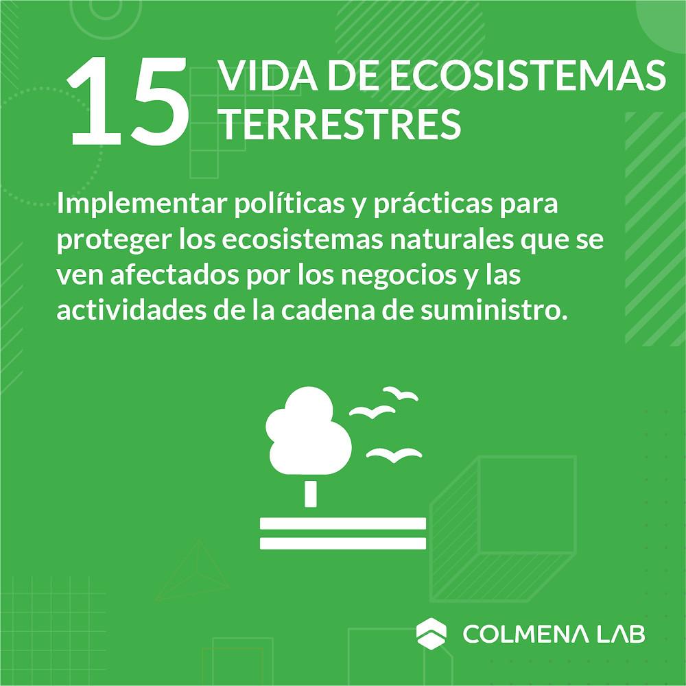 Objetivo de desarrollo sostenible 15 Vida de Ecosistemas Terrestres