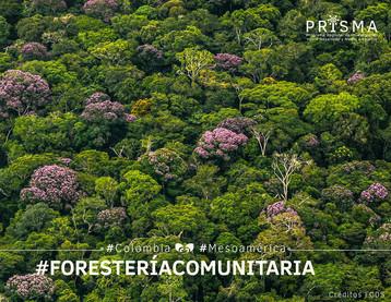 Datos de forestería comunitaria