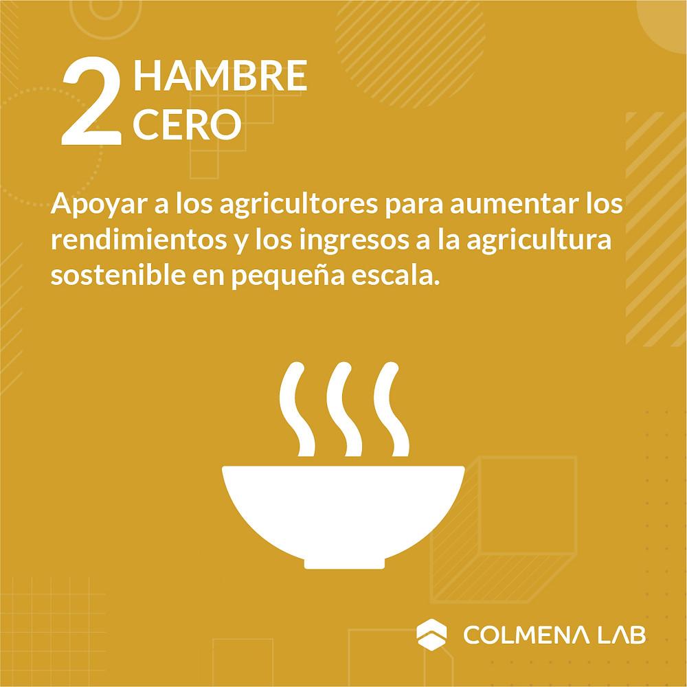 Objetivo de desarrollo sostenible 2 Hambre Cero