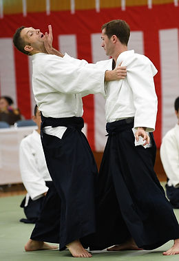 Aikido Japon demonstration