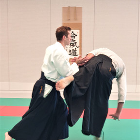 Aikido Ligue Nouvelle Aquitaine FFAAA