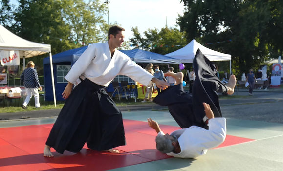 Videos Ludovic Cauderan Aikido FFAAA 5eme Dan Aikikai