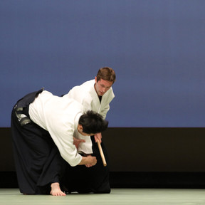 Aikido Pays de la Loire