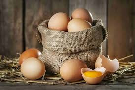 Ovos Biológicos - Benefícios