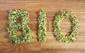 A importância dos alimentos verdes