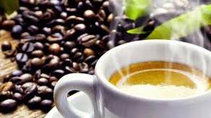 Café...what else??? Mas biológico!!