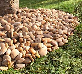Pebbles Yellow Random 3.JPG