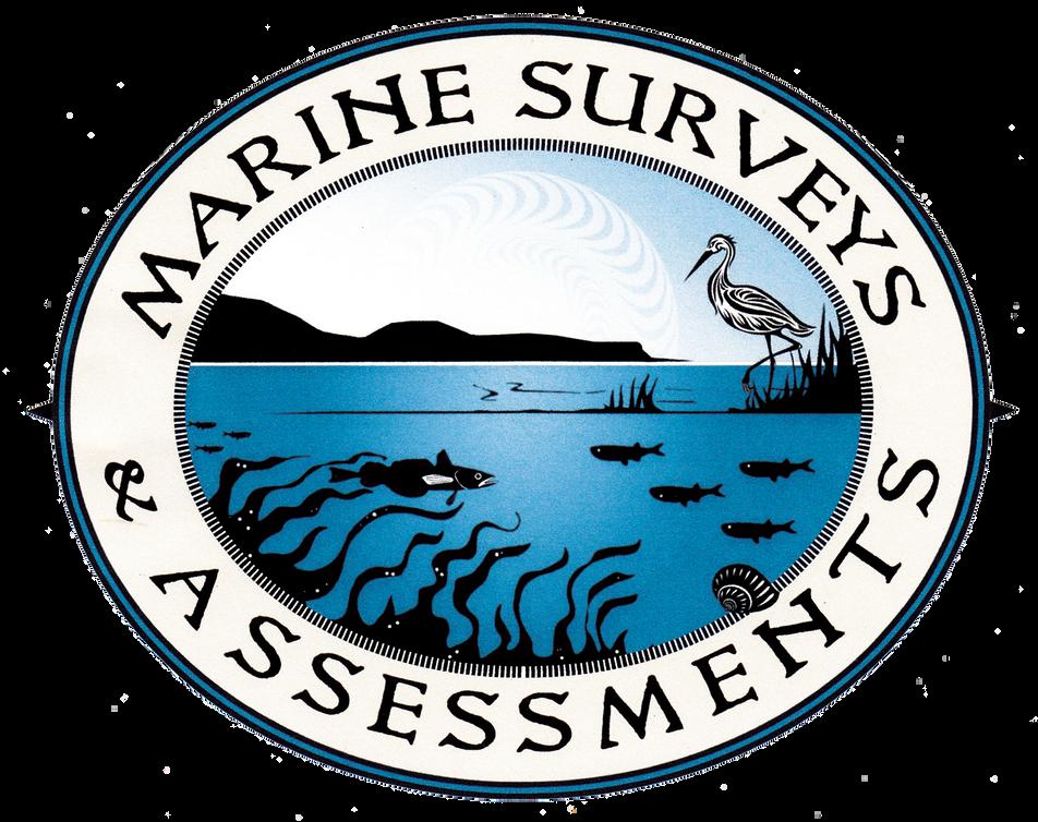 Marine Surveys and Assessments Logo