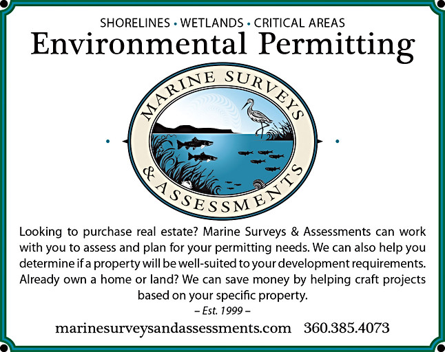 Marine Surveys and Assessments ad for a real estate publication