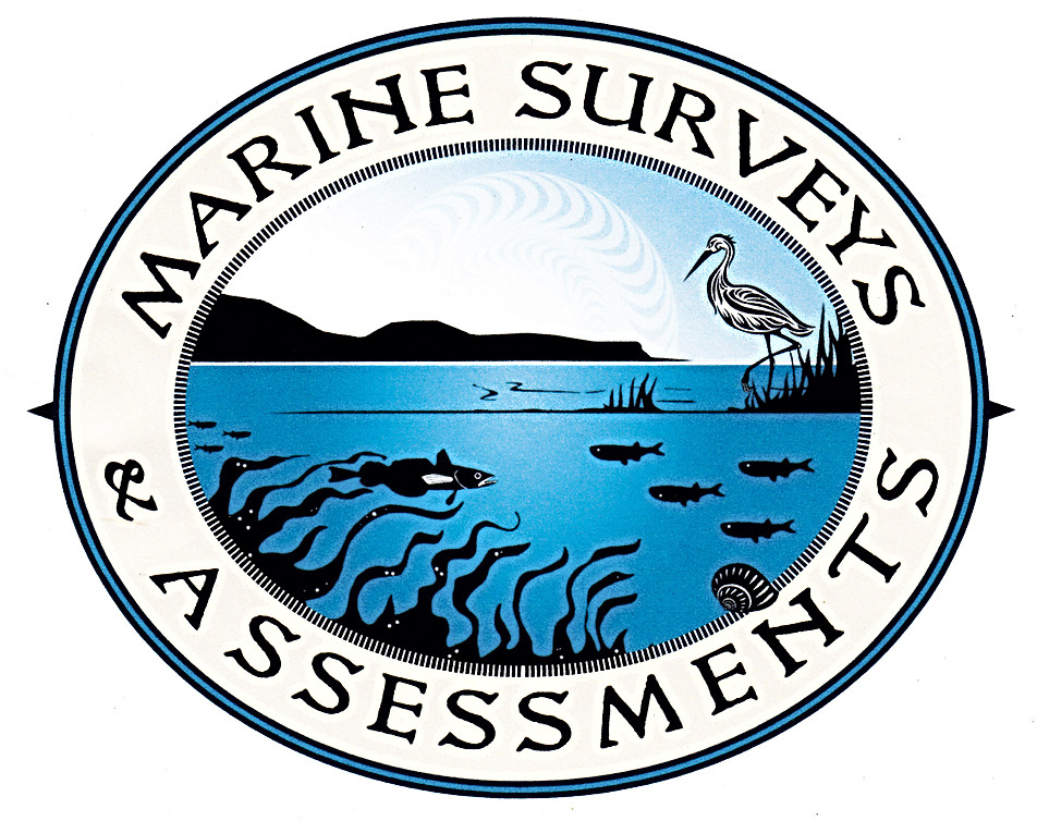 Marine Surveys & Assessments