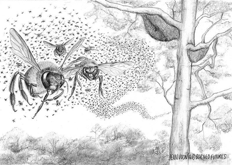 BeesWeb2.jpg